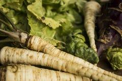 Partido vegetal saudável Foto de Stock