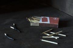 partidos enteros y quemados Fotografía de archivo libre de regalías
