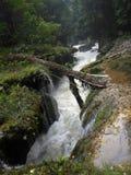 Partie étroite de rivière de Cahabon chez Semuc Champey Images libres de droits