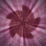 Partie abstraite en spirale radiale rouge de profil sous convention astérisque Images stock