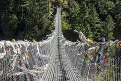 Partie antérieure de Hillary Suspension Bridge Photo libre de droits