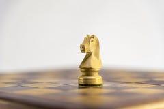 Partie d'échecs, chevalier Photos libres de droits
