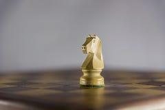 Partie d'échecs, chevalier Photographie stock libre de droits