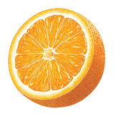 Partie d'orange illustration stock