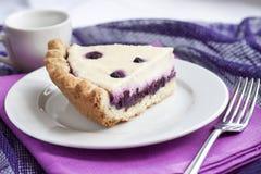 Partie de gâteau au fromage avec des myrtilles Images libres de droits