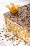 Partie de gâteau avec du chocolat Photographie stock