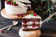 Partie de gâteau crémeux posé de fruit avec dans la fin vers le haut de la vue Gâteau de framboise avec du chocolat Gâteau de cho photographie stock libre de droits