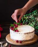 Partie de gâteau crémeux posé de fruit avec dans la fin vers le haut de la vue Gâteau de framboise avec du chocolat Gâteau de cho image stock
