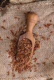 Partie de riz rouge Photographie stock