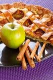 Partie de tarte de pomme avec de la cannelle Photographie stock libre de droits