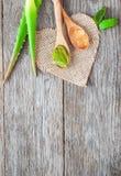 Parties d'aloès vera Herbe utile pour des soins de la peau et des soins capillaires Photo libre de droits