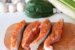 Parties d'un saumon Images libres de droits