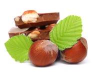 Parties de chocolat avec des noisettes Photographie stock libre de droits
