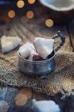 Parties de noix de coco Images stock