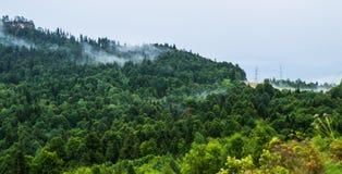 Parties de nuages dans la forêt sur la montagne Image stock
