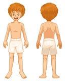 Parties du corps de garçon Photo libre de droits