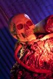 Parties du corps et entrailles de crâne photos stock
