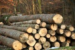 Parties en bois photos stock