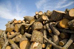 Parties en bois Image stock