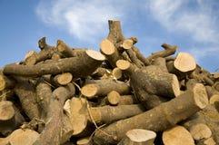 Parties en bois Photo libre de droits