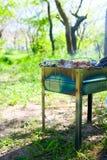 Parties savoureuses de viande grillée Images stock