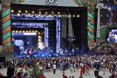 Partifolk på en levande konsert arkivbilder