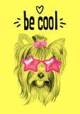 Partihund med exponeringsglas: vykort inbjudan Vektor Illustrationer