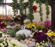 Partij van bloemen Stock Afbeelding