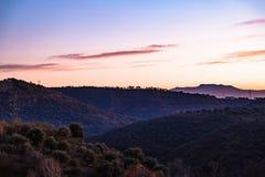 Partij van mooie die heuvels met bos in Spanje worden behandeld Stock Foto