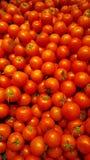 Partij van tomaat bij markt royalty-vrije stock afbeelding
