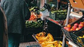 Partij van verse groenten op de marktteller De kopers bekijken de keus van verse tomaten, aardappels, peper, bonen stock videobeelden