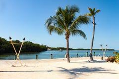 Partijstrand in de Sleutels van Florida met zeevogels en tikitoortsen en palmen en boten uit in het water dichtbij stock afbeeldingen
