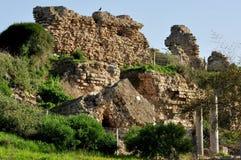 Partiklar av forntid Arkivbilder