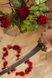 Parting. Red roses in focus and heart from petals broken by saw royalty free stock photography