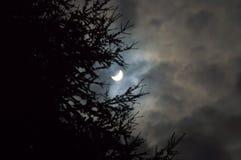 Partiska moln för sol- förmörkelse royaltyfri fotografi