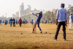 Partita del cricket con pallina da tennis immagine stock libera da diritti