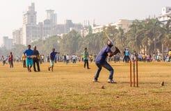 Partita del cricket con pallina da tennis fotografie stock libere da diritti
