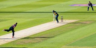 Partita del cricket T20 Immagine Stock