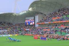 Partita di football americano asiatica di calcio della tazza Fotografia Stock Libera da Diritti