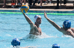PARTITA DI WATERPOLO Immagine Stock