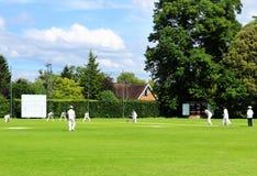 Partita inglese del cricket Fotografie Stock