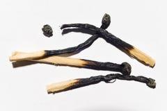 Partite bruciate isolate sul primo piano bianco del fondo Immagini Stock Libere da Diritti
