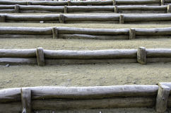 Partitions of logs. In sequence. stock image