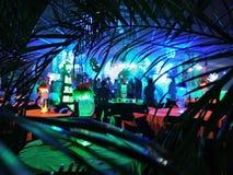 Partito al neon tropicale Fotografia Stock Libera da Diritti