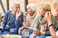 Partito del cortile degli amici invecchiati fotografie stock libere da diritti