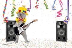 Partito del gatto della chitarra Immagine Stock