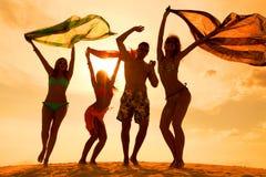 Partito di anni dell'adolescenza della spiaggia Immagine Stock