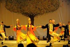 Partito di concerto di graduazione della classe di dancing di Uygur dance-2011 dello Xinjiang Fotografia Stock