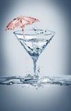 Partito di estate di Martini Fotografia Stock