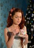 Partito di tè sulla notte di Natale Immagini Stock Libere da Diritti